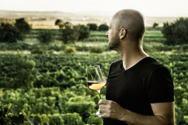 On the Vine: Honest Wines – Purbach, Burgenland