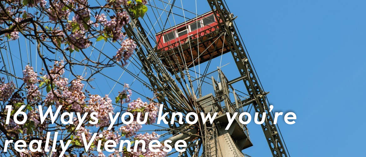 16-ways to know you are really Viennese